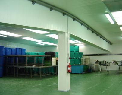 wonderboard-plafond